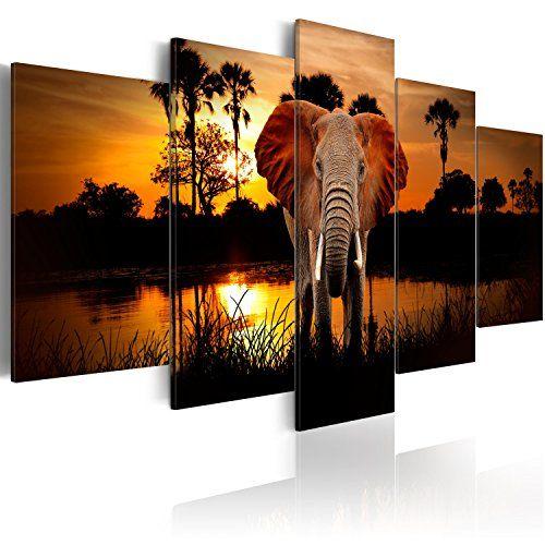 Cuadros Modernos de Salón Elefante Selva