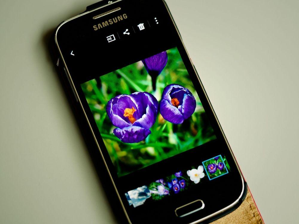 Seleccionar fotos para Imprimir fotos en marcos para fotos